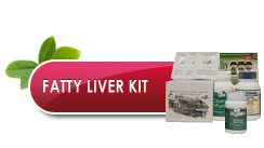 Biotherapy Clinic. Fatty Liver Kit
