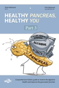 """Healthy Pancreas, Healthy You"" Part 3 ebook by Peter Melamed, PhD practitioner at Biotherapy Clinic"