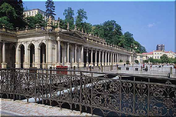 healing with karlovy vary mineral water