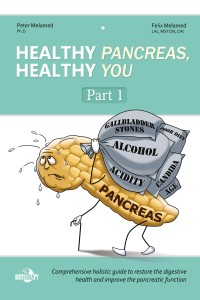 """Healthy Pancreas, Healthy You"" Part 1 ebook by Peter Melamed, PhD practitioner at Biotherapy Clinic in San Francisco Bay Area. Available online at www.biotherapystore.com"